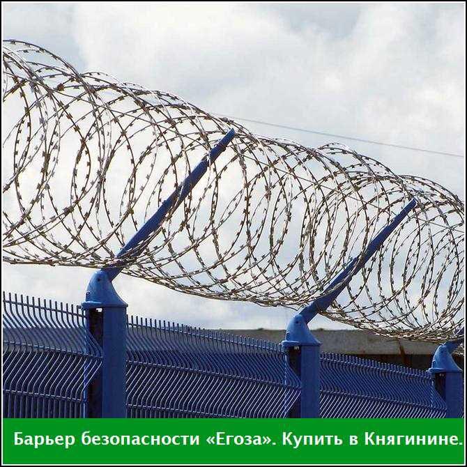 Купить в Княгинине барьер безопасности «Егоза»