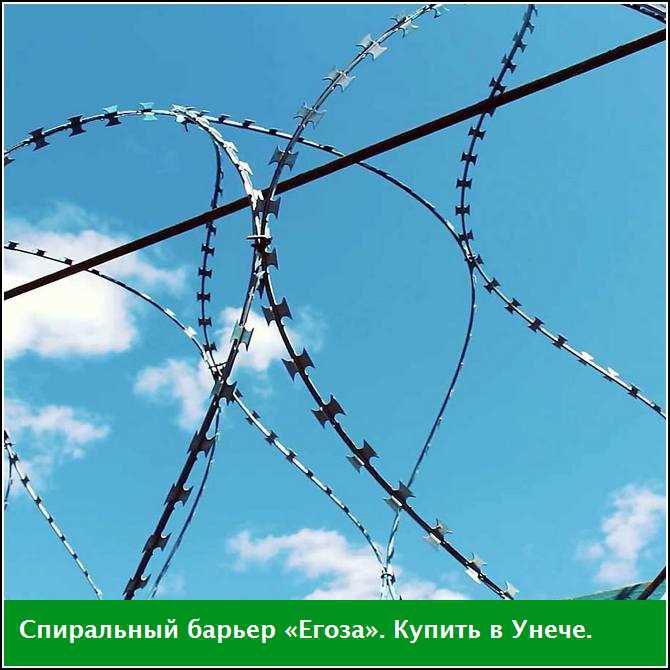 Спиральный барьер «Егоза», купить в Унече (Брянская область)